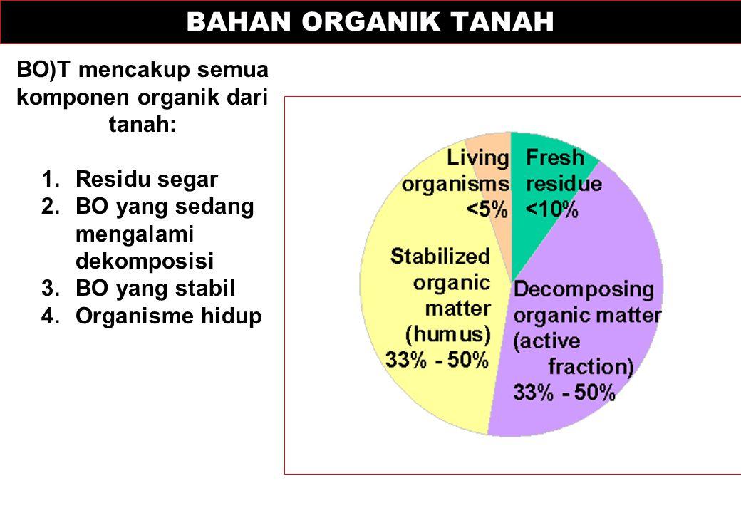 BAHAN ORGANIK TANAH BO)T mencakup semua komponen organik dari tanah: 1.Residu segar 2.BO yang sedang mengalami dekomposisi 3.BO yang stabil 4.Organism