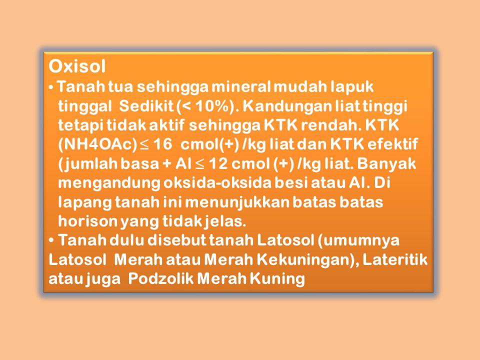 Oxisol Tanah tua sehingga mineral mudah lapuk tinggal Sedikit (< 10%). Kandungan liat tinggi tetapi tidak aktif sehingga KTK rendah. KTK (NH4OAc) ≤ 16