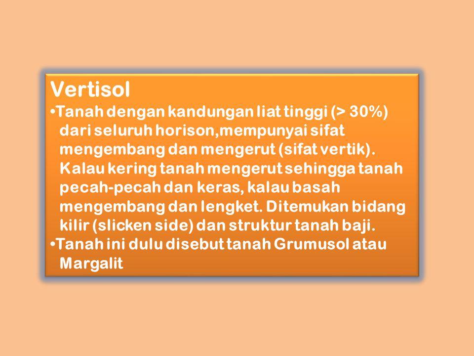 Vertisol Tanah dengan kandungan liat tinggi (> 30%) dari seluruh horison,mempunyai sifat mengembang dan mengerut (sifat vertik). Kalau kering tanah me