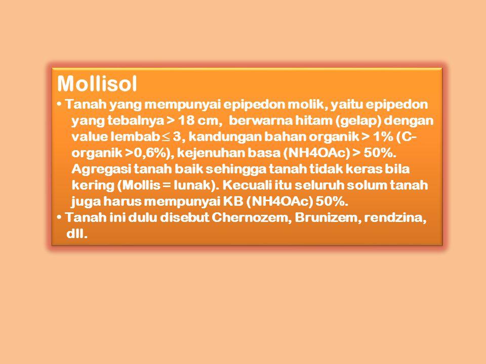 Mollisol Tanah yang mempunyai epipedon molik, yaitu epipedon yang tebalnya > 18 cm, berwarna hitam (gelap) dengan value lembab ≤ 3, kandungan bahan or
