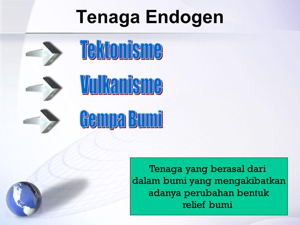 Tenaga Endogen Tenaga yang berasal dari dalam bumi yang mengakibatkan adanya perubahan bentuk relief bumi