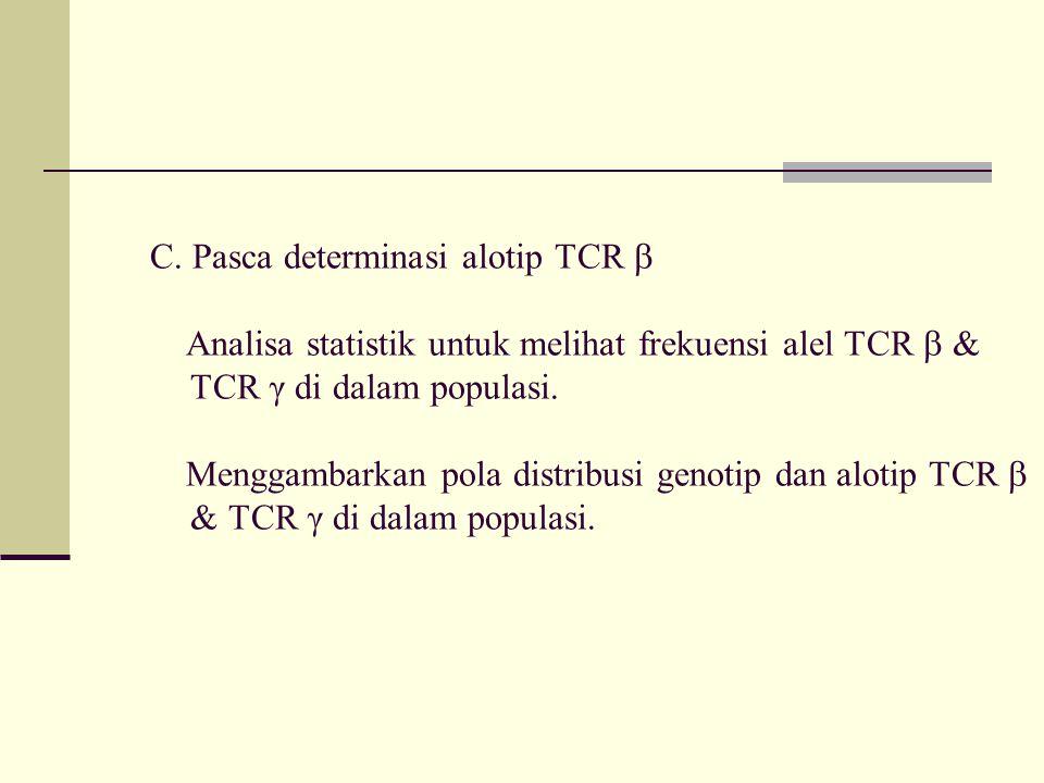 C. Pasca determinasi alotip TCR  Analisa statistik untuk melihat frekuensi alel TCR  & TCR γ di dalam populasi. Menggambarkan pola distribusi genoti