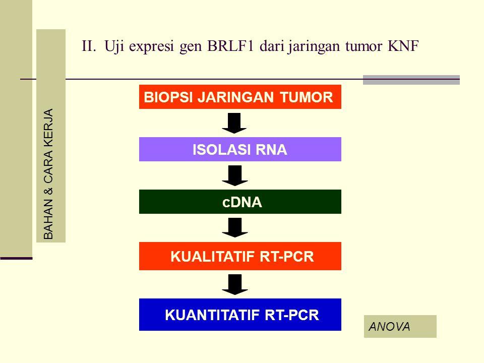BAHAN & CARA KERJA BIOPSI JARINGAN TUMOR ANOVA ISOLASI RNA cDNA KUALITATIF RT-PCR KUANTITATIF RT-PCR II. Uji expresi gen BRLF1 dari jaringan tumor KNF