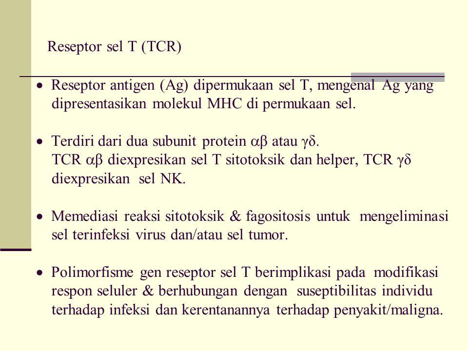 Reseptor sel T (TCR)  Reseptor antigen (Ag) dipermukaan sel T, mengenal Ag yang dipresentasikan molekul MHC di permukaan sel.  Terdiri dari dua subu