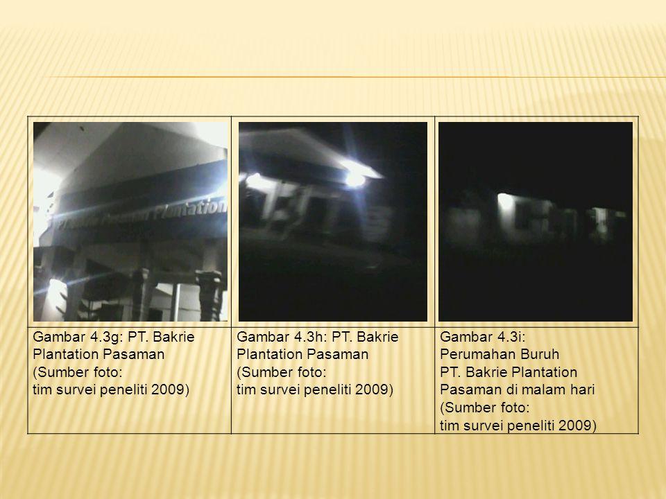 Gambar 4.3d: PT. Bakrie Plantation Pasaman (Sumber foto: tim survei peneliti 2009) Gambar 4.3e: PT. Bakrie Plantation Pasaman (Sumber foto: tim survei