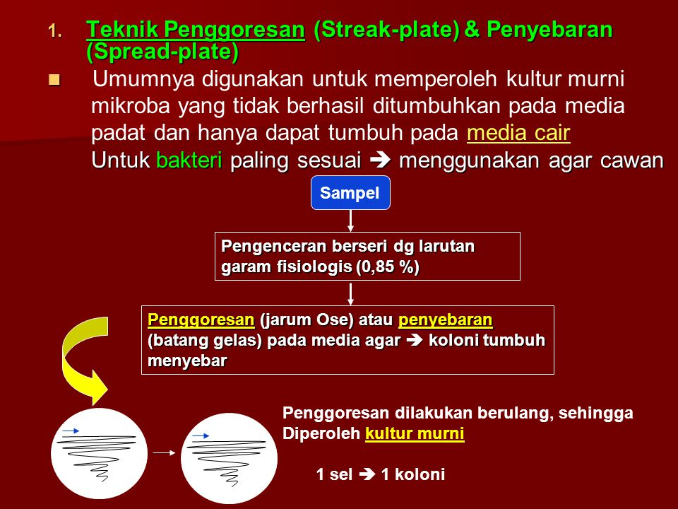 1. Teknik Penggoresan (Streak-plate) & Penyebaran (Spread-plate) Umumnya digunakan untuk memperoleh kultur murni mikroba yang tidak berhasil ditumbuhk