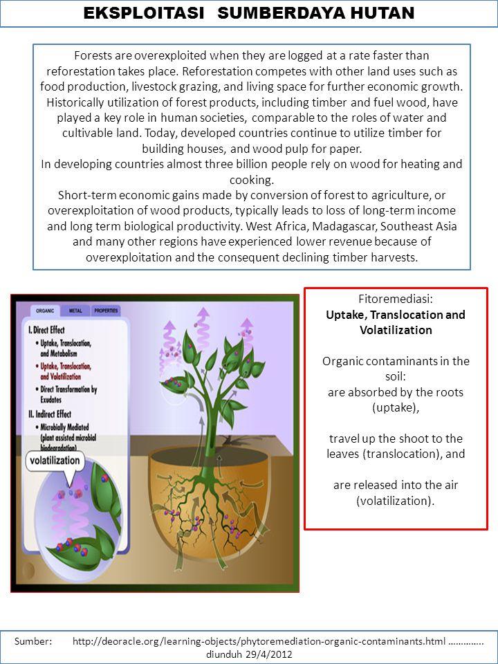 EKSPLOITASI SUMBERDAYA HUTAN Sumber: http://deoracle.org/learning-objects/phytoremediation-organic-contaminants.html …………..