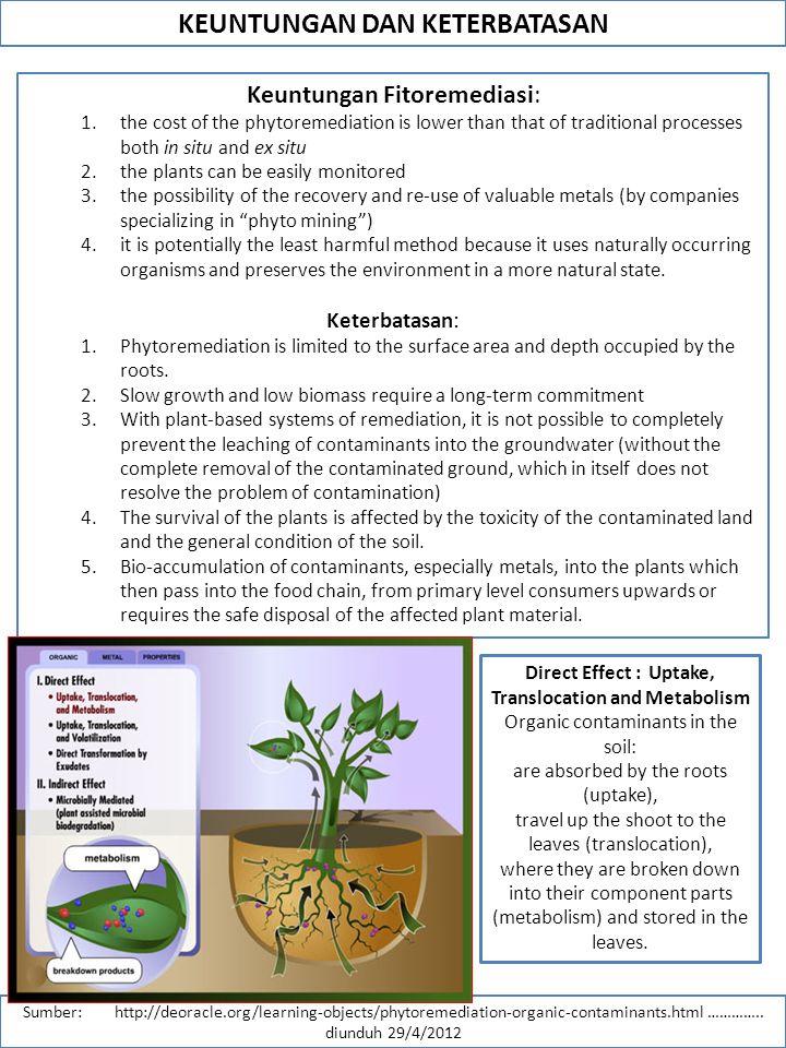 KEUNTUNGAN DAN KETERBATASAN Sumber: http://deoracle.org/learning-objects/phytoremediation-organic-contaminants.html …………..