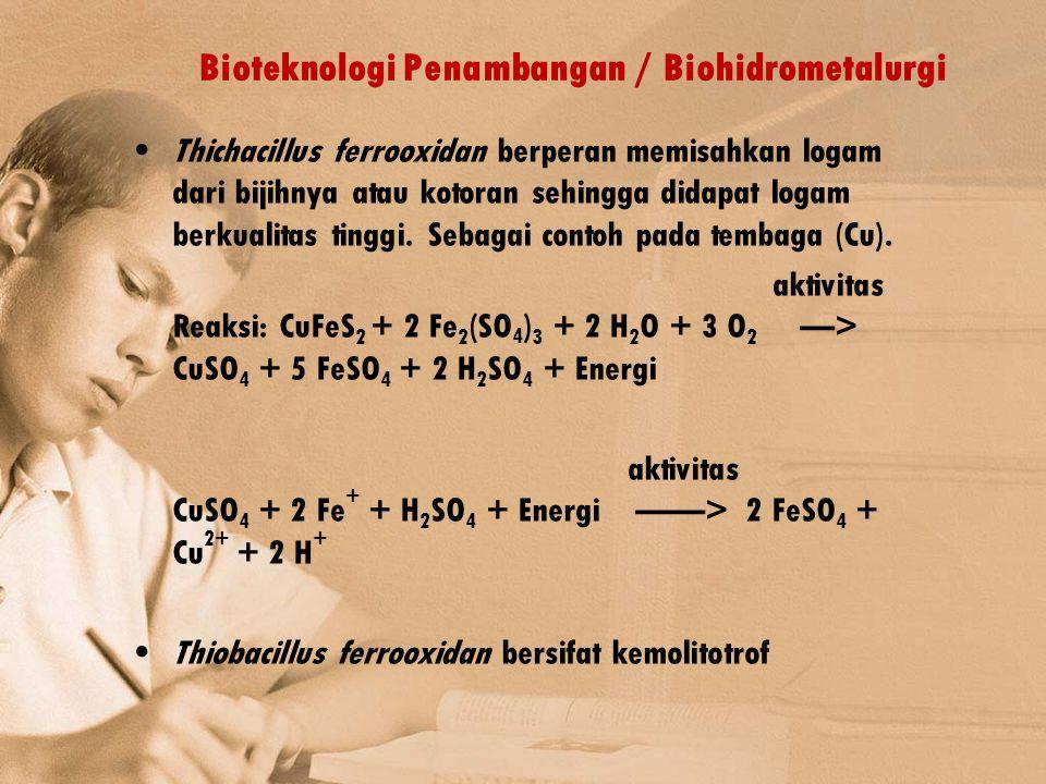 Bioteknologi Penambangan / Biohidrometalurgi Thichacillus ferrooxidan berperan memisahkan logam dari bijihnya atau kotoran sehingga didapat logam berk