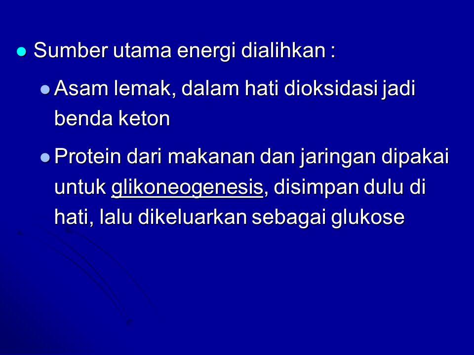 Sumber utama energi dialihkan : Sumber utama energi dialihkan : Asam lemak, dalam hati dioksidasi jadi benda keton Asam lemak, dalam hati dioksidasi j
