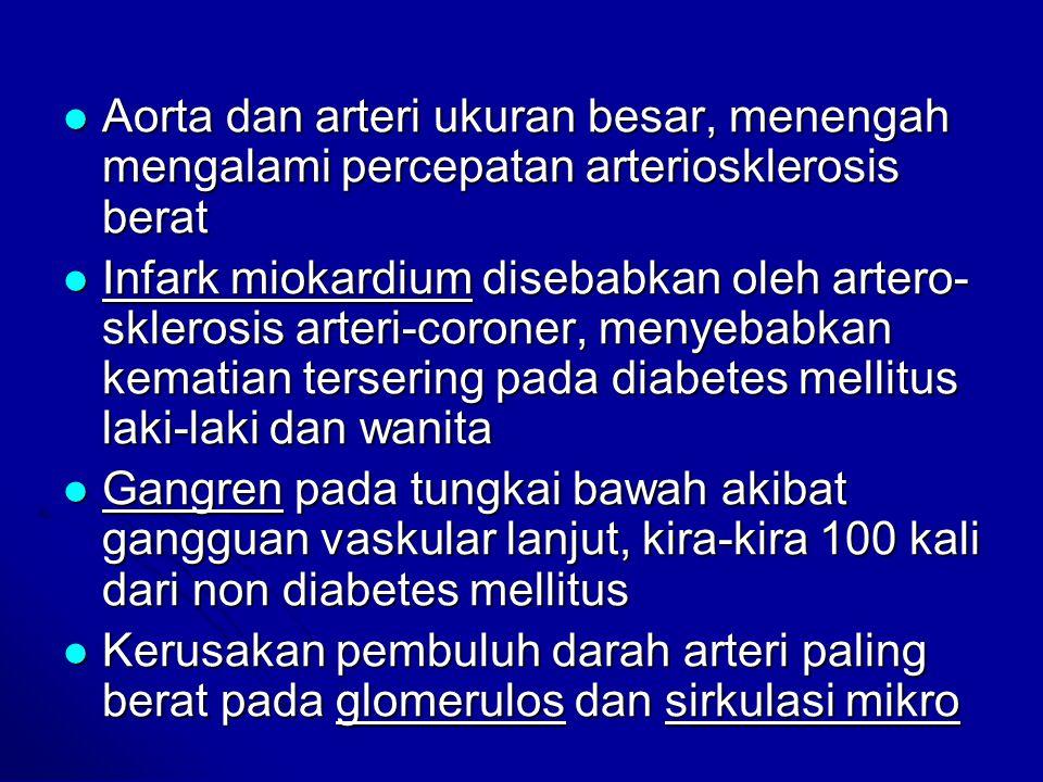 Aorta dan arteri ukuran besar, menengah mengalami percepatan arteriosklerosis berat Aorta dan arteri ukuran besar, menengah mengalami percepatan arter