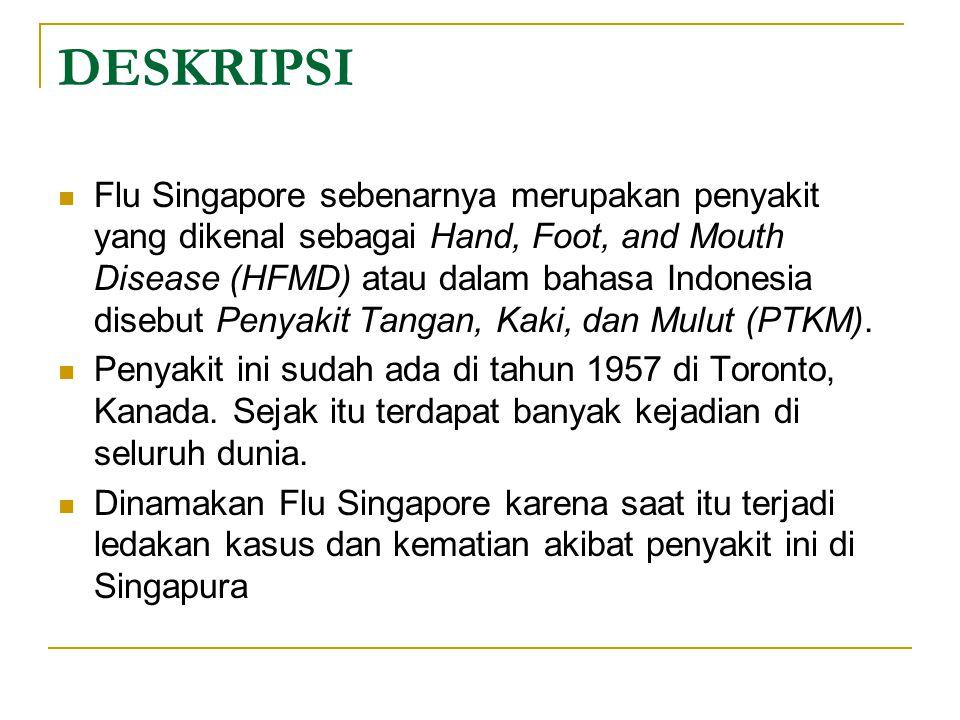 DESKRIPSI Flu Singapore sebenarnya merupakan penyakit yang dikenal sebagai Hand, Foot, and Mouth Disease (HFMD) atau dalam bahasa Indonesia disebut Penyakit Tangan, Kaki, dan Mulut (PTKM).