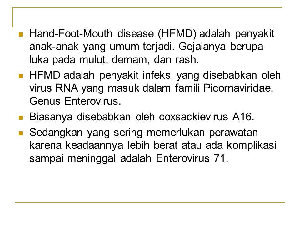 Hand-Foot-Mouth disease (HFMD) adalah penyakit anak-anak yang umum terjadi.