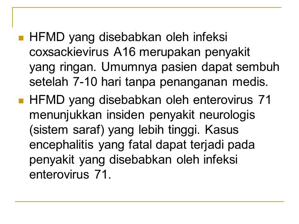 HFMD yang disebabkan oleh infeksi coxsackievirus A16 merupakan penyakit yang ringan.