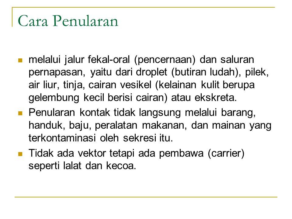 Pengobatan oseltamivir atau zanamivir.