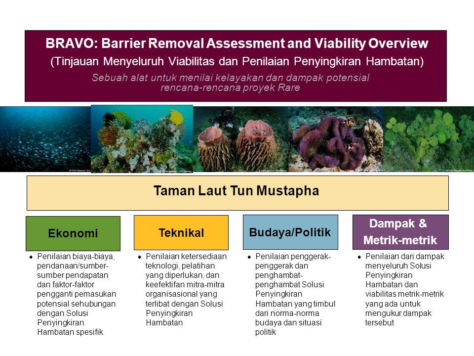 Sebuah alat untuk menilai kelayakan dan dampak potensial rencana-rencana proyek Rare BRAVO: Barrier Removal Assessment and Viability Overview (Tinjaua