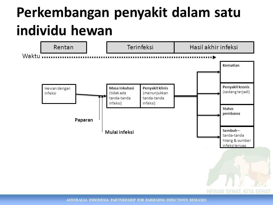 AUSTRALIA INDONESIA PARTNERSHIP FOR EMERGING INFECTIOUS DISEASES Perkembangan penyakit dalam satu individu hewan Waktu Hewan dengan infeksi Masa inkub