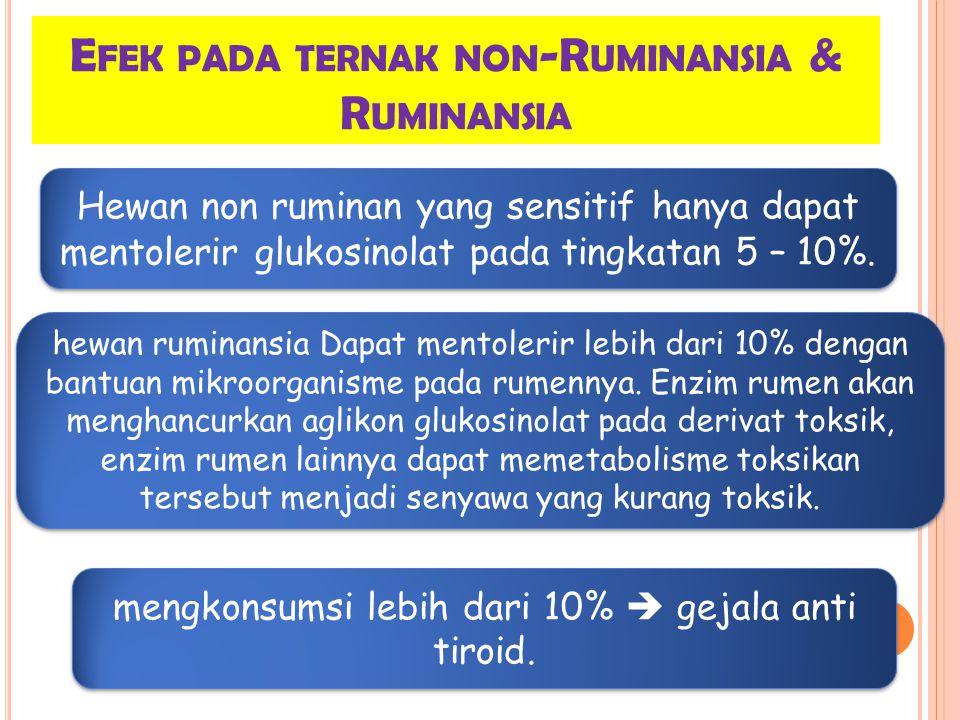 E FEK PADA TERNAK NON -R UMINANSIA & R UMINANSIA Hewan non ruminan yang sensitif hanya dapat mentolerir glukosinolat pada tingkatan 5 – 10%.