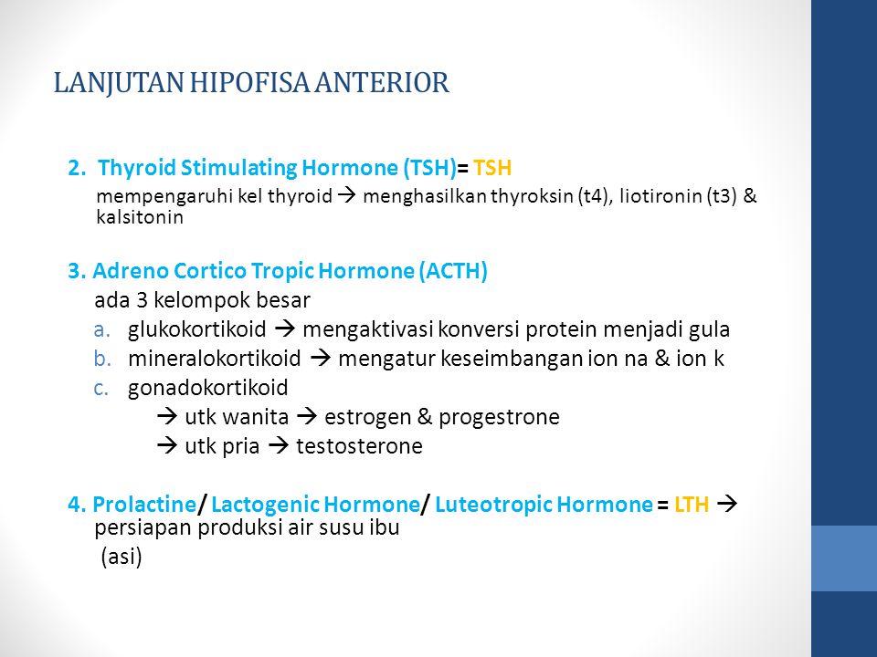 LANJUTAN HIPOFISA ANTERIOR 2.