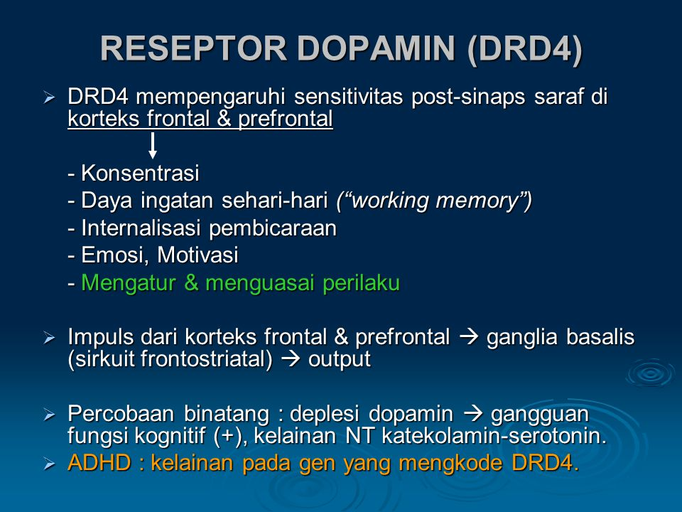RESEPTOR DOPAMIN (DRD4)  DRD4 mempengaruhi sensitivitas post-sinaps saraf di korteks frontal & prefrontal - Konsentrasi - Daya ingatan sehari-hari ( working memory ) - Internalisasi pembicaraan - Emosi, Motivasi - Mengatur & menguasai perilaku  Impuls dari korteks frontal & prefrontal  ganglia basalis (sirkuit frontostriatal)  output  Percobaan binatang : deplesi dopamin  gangguan fungsi kognitif (+), kelainan NT katekolamin-serotonin.