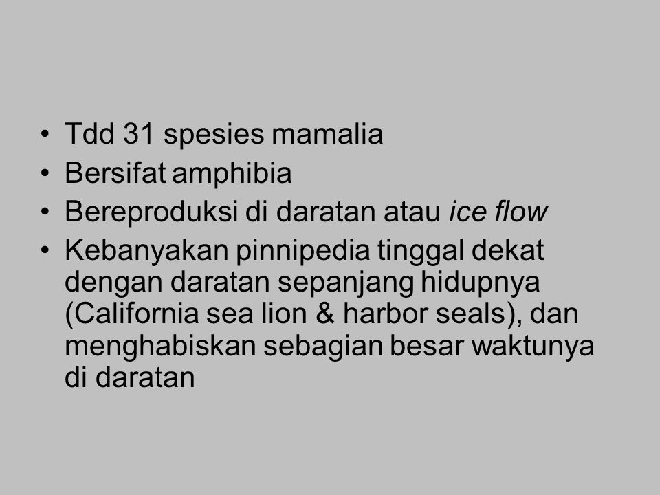 Tdd 31 spesies mamalia Bersifat amphibia Bereproduksi di daratan atau ice flow Kebanyakan pinnipedia tinggal dekat dengan daratan sepanjang hidupnya (California sea lion & harbor seals), dan menghabiskan sebagian besar waktunya di daratan