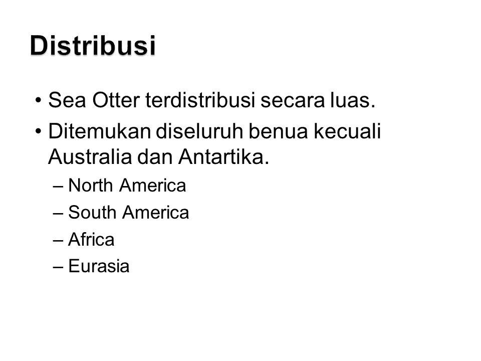 Sea Otter terdistribusi secara luas.Ditemukan diseluruh benua kecuali Australia dan Antartika.