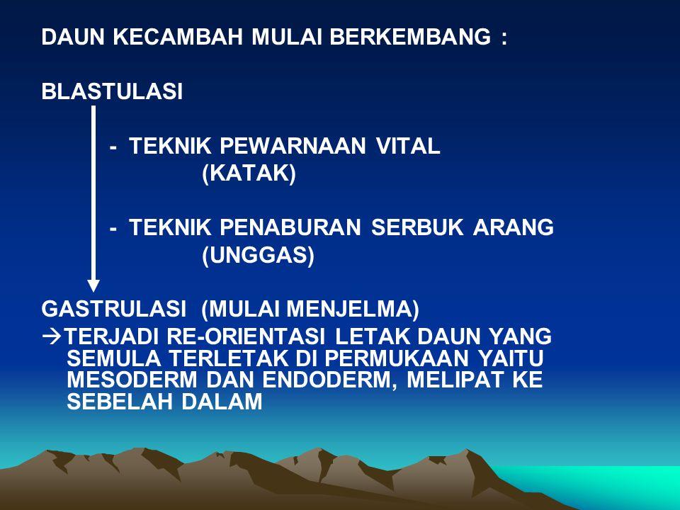 -TRANSFORMASI ORGANOGENESIS : - DIFERENSIASI ORGANOGENESIS MELIPUTI : 1.PERPANJANGAN TUBUH 2.PEMBENTUKAN EKOR 3.PEMISAHAN TUBUH MENJADI BAGIAN KEPALA DAN BADAN 4.PERKEMBANGAN EKSTREMITAS 5.PEMISAHAN TUBUH EMBRIO DARI SELAPUT EKSTRA EMBRIONAL