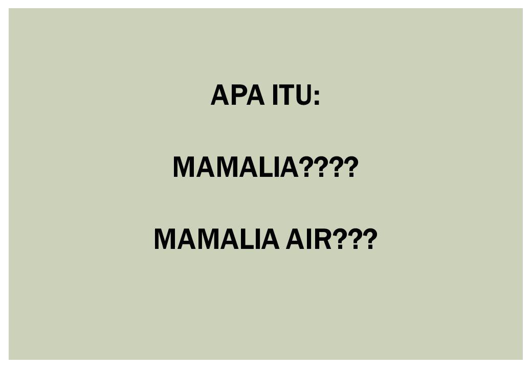 APA ITU: MAMALIA???? MAMALIA AIR???
