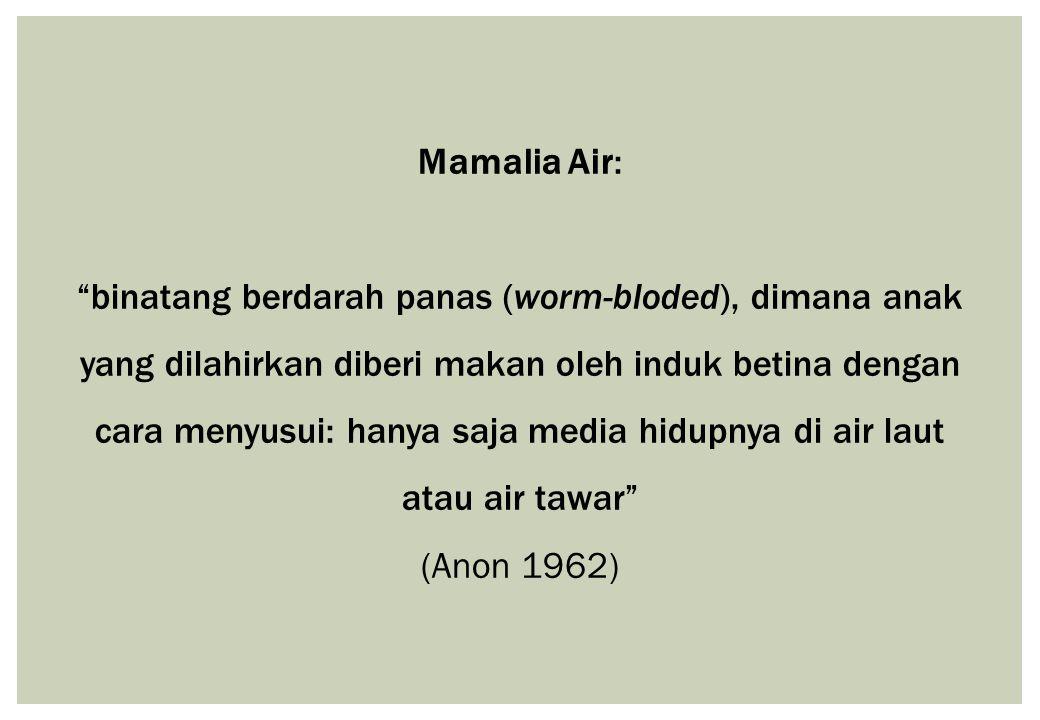 "Mamalia Air: ""binatang berdarah panas (worm-bloded), dimana anak yang dilahirkan diberi makan oleh induk betina dengan cara menyusui: hanya saja media"