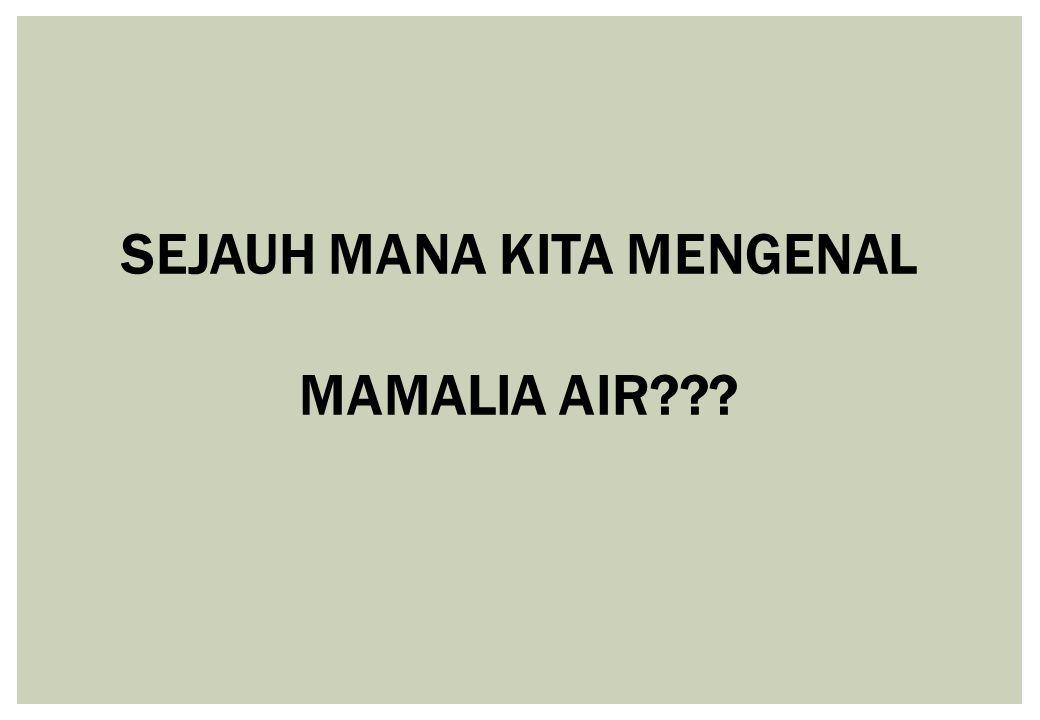 SEJAUH MANA KITA MENGENAL MAMALIA AIR???