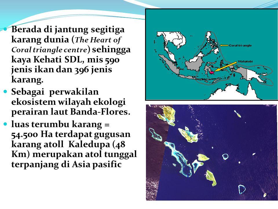 Berada di jantung segitiga karang dunia ( The Heart of Coral triangle centre ) sehingga kaya Kehati SDL, mis 590 jenis ikan dan 396 jenis karang.
