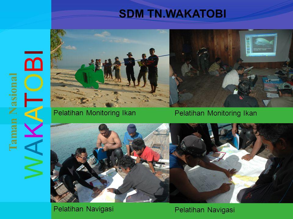 SDM TN.WAKATOBI WAKATOBIWAKATOBI Taman Nasional Pelatihan Monitoring Ikan Pelatihan Navigasi