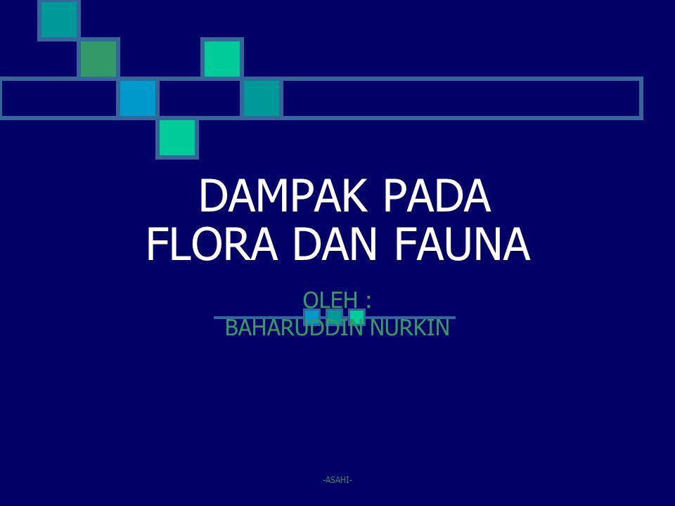 DAMPAK PADA FLORA DAN FAUNA OLEH : BAHARUDDIN NURKIN -ASAHI-