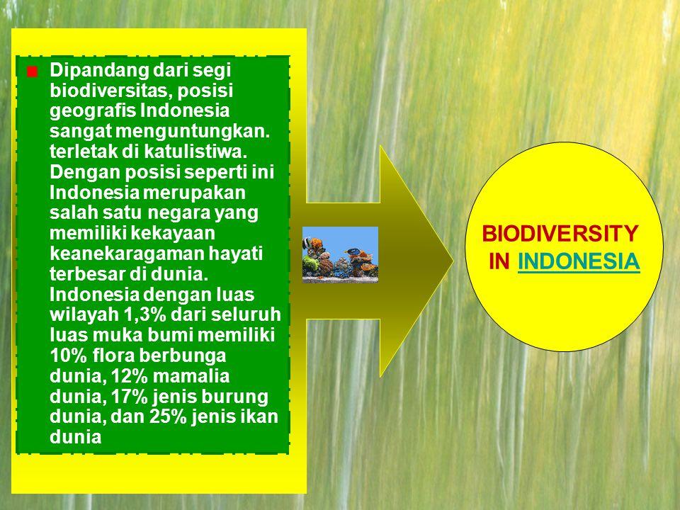 1.  SDA Pemanfaatan Sumber Daya Alam Pelestarian Sumber Daya Alam Daftar Isi Keanekaragaman Hayati di Indonesia: 1.Pola Penyebaran Keanekaragaman Hay