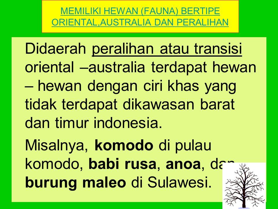POLA PENYEBARAN HEWAN DI INDONESIA DIWARNAI Memiliki Hewan (Fauna) Bertipe Oiental,Australia dan PeralihanOientalAustralia Peralihan Memiliki Tumbuhan