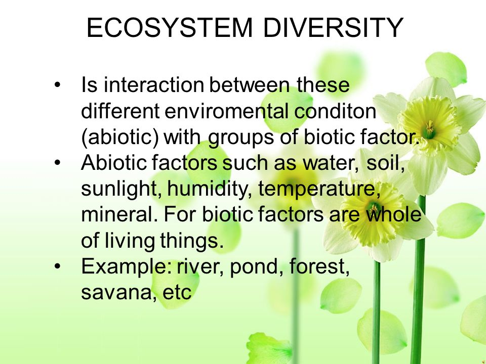 SPESIES DIVERSITY Is differences between species of living things that inhabit a particular habitat. Species diversity is found on certain regions or