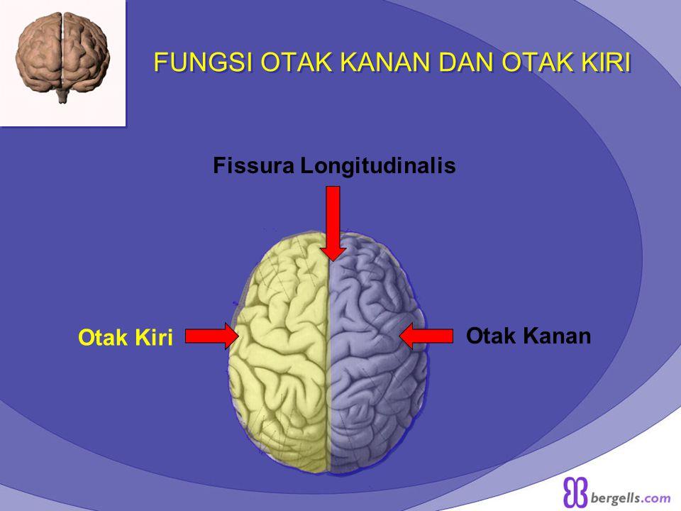 FUNGSI OTAK KANAN DAN OTAK KIRI Fissura Longitudinalis Otak Kiri Otak Kanan