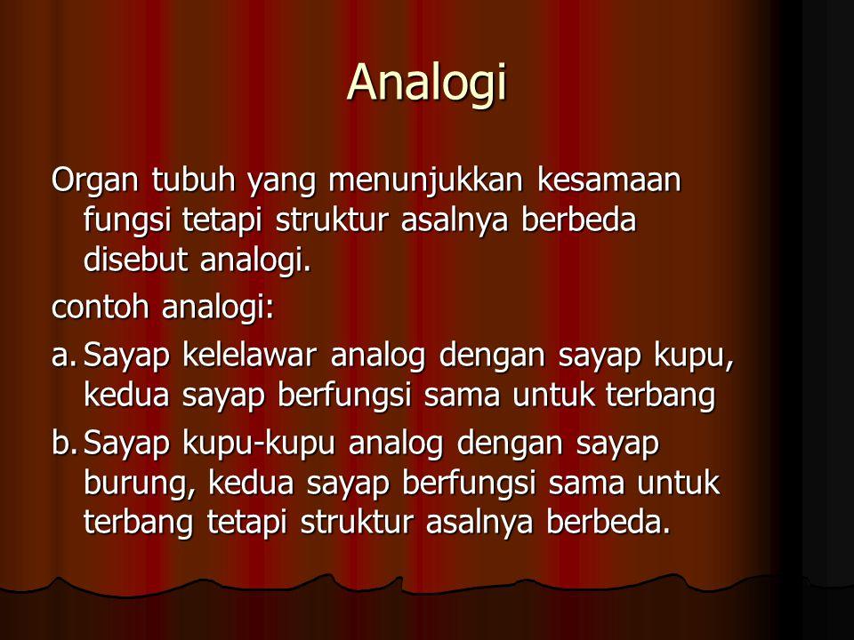 Analogi Organ tubuh yang menunjukkan kesamaan fungsi tetapi struktur asalnya berbeda disebut analogi. contoh analogi: a.Sayap kelelawar analog dengan
