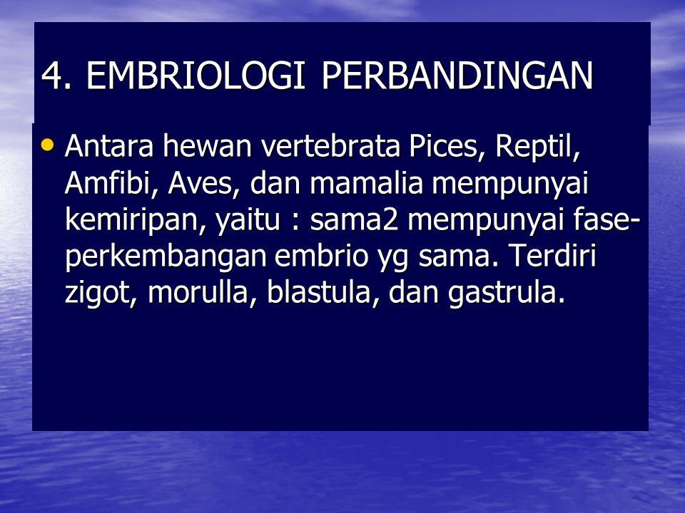4. EMBRIOLOGI PERBANDINGAN Antara hewan vertebrata Pices, Reptil, Amfibi, Aves, dan mamalia mempunyai kemiripan, yaitu : sama2 mempunyai fase- perkemb
