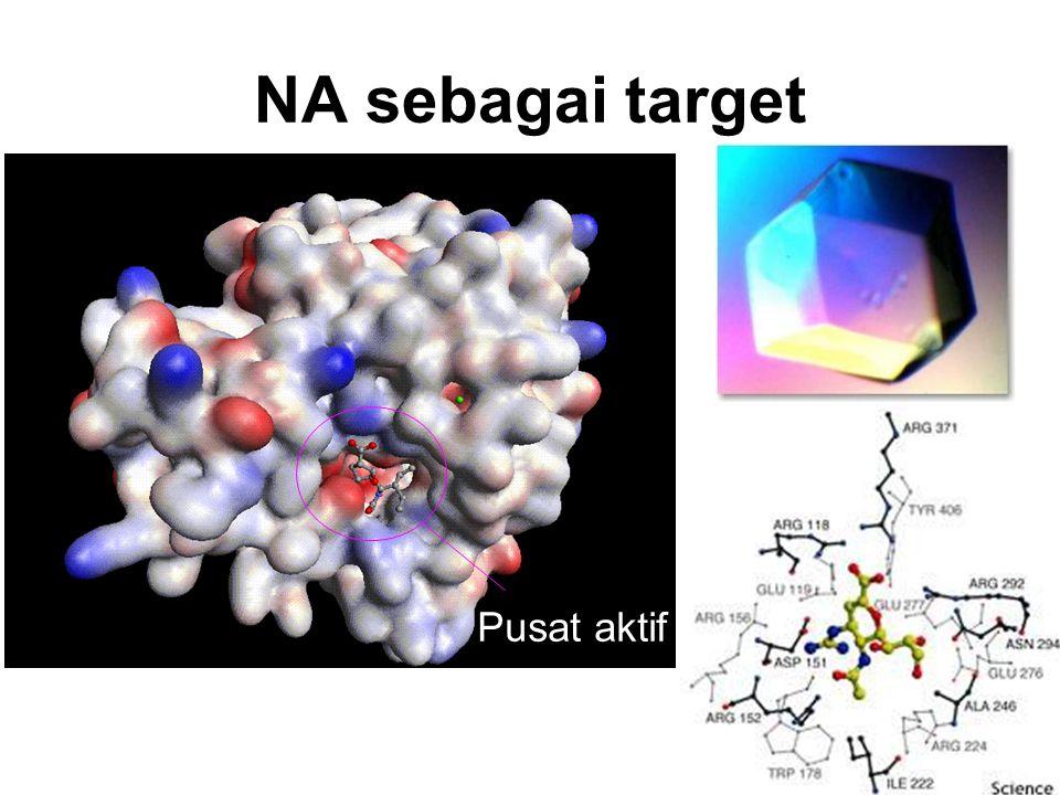 NA sebagai target Pusat aktif
