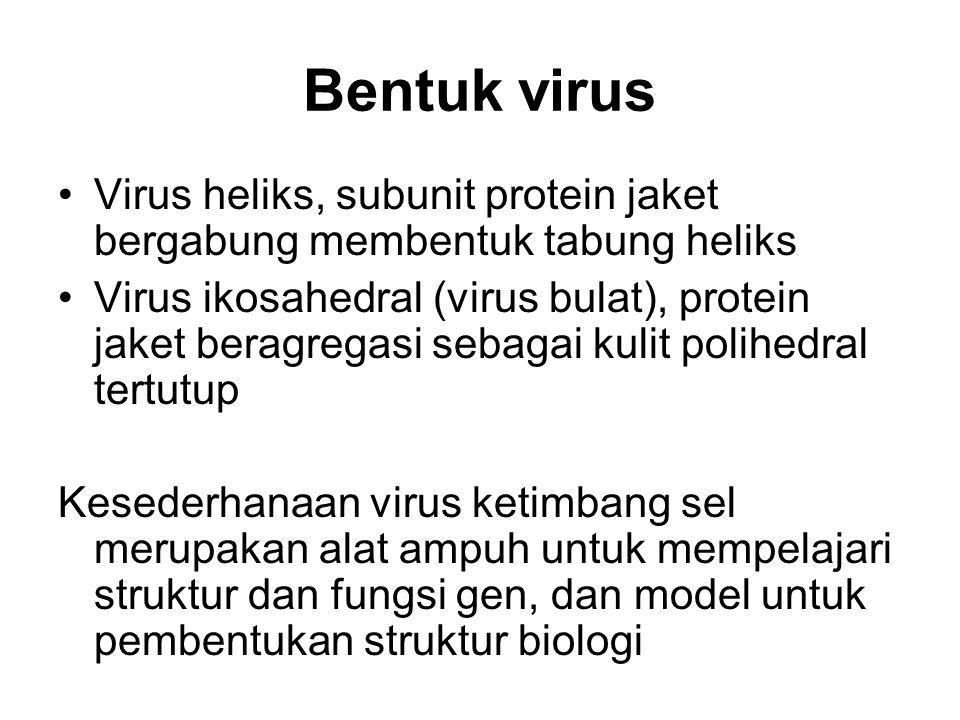 Bentuk virus Virus heliks, subunit protein jaket bergabung membentuk tabung heliks Virus ikosahedral (virus bulat), protein jaket beragregasi sebagai
