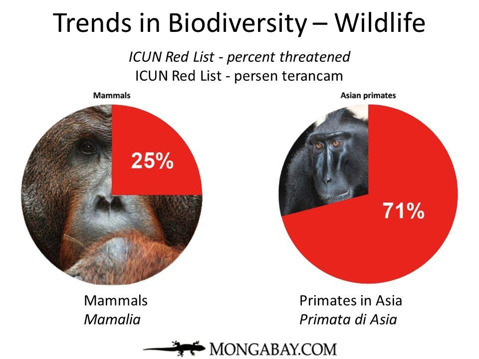 Trends in Biodiversity – Wildlife mongabay.com Mammals Primates in Asia Mamalia Primata di Asia ICUN Red List - percent threatened ICUN Red List - per