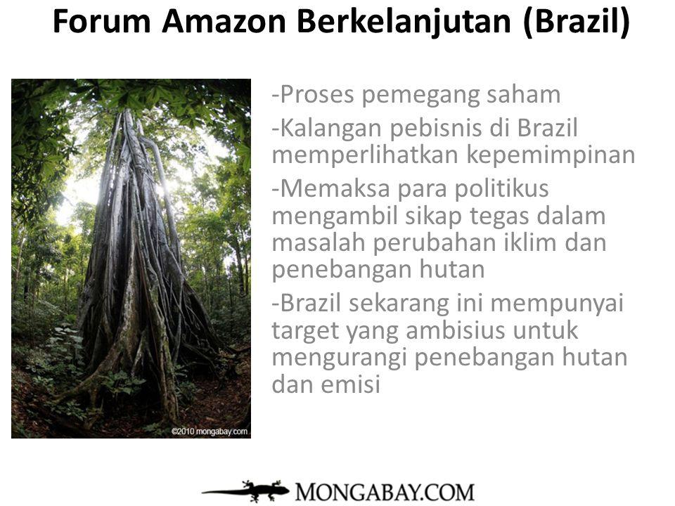 Forum Amazon Berkelanjutan (Brazil) -Proses pemegang saham -Kalangan pebisnis di Brazil memperlihatkan kepemimpinan -Memaksa para politikus mengambil