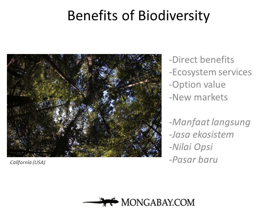 Benefits of Biodiversity -Direct benefits -Ecosystem services -Option value -New markets -Manfaat langsung -Jasa ekosistem -Nilai Opsi -Pasar baru mon