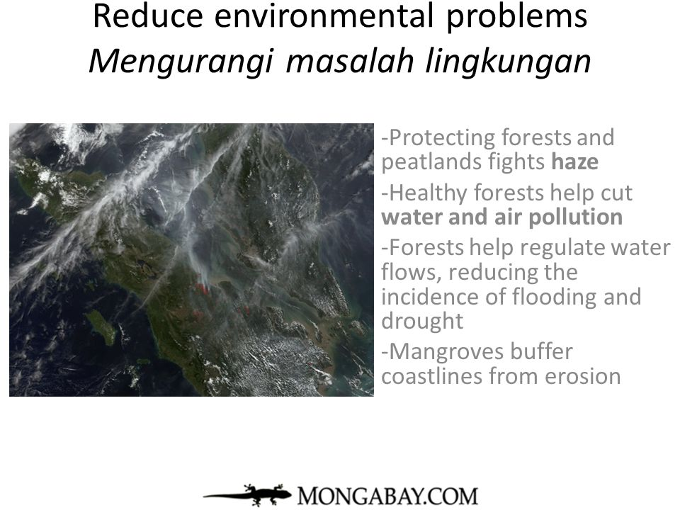 Reduce environmental problems Mengurangi masalah lingkungan -Protecting forests and peatlands fights haze -Healthy forests help cut water and air poll