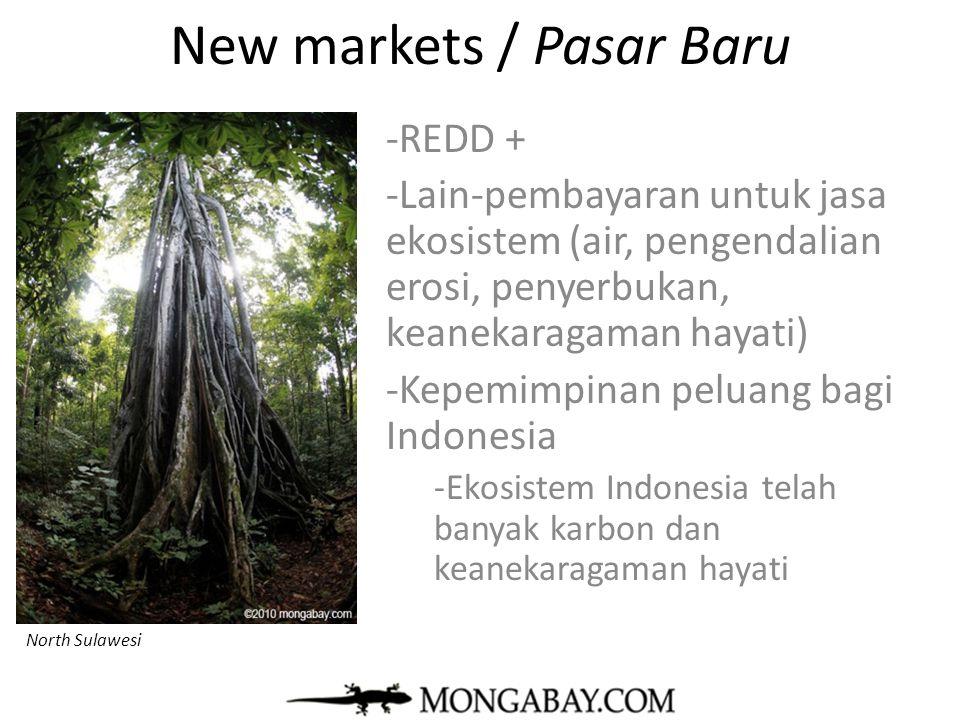 New markets / Pasar Baru -REDD + -Lain-pembayaran untuk jasa ekosistem (air, pengendalian erosi, penyerbukan, keanekaragaman hayati) -Kepemimpinan pel