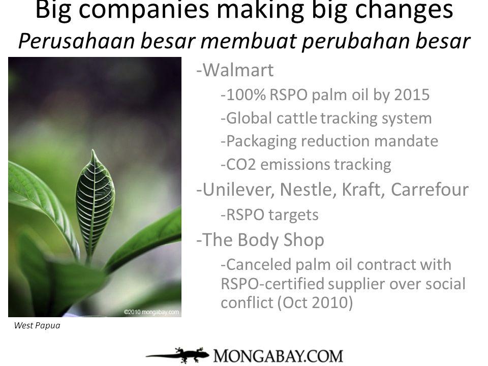 Big companies making big changes Perusahaan besar membuat perubahan besar -Walmart -100% RSPO palm oil by 2015 -Global cattle tracking system -Packagi