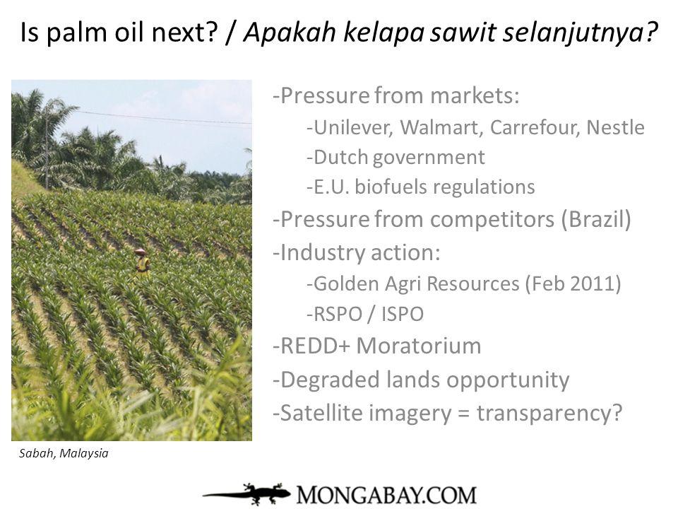 Is palm oil next? / Apakah kelapa sawit selanjutnya? -Pressure from markets: -Unilever, Walmart, Carrefour, Nestle -Dutch government -E.U. biofuels re