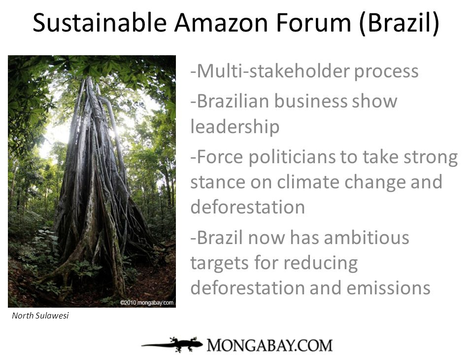 Sustainable Amazon Forum (Brazil) -Multi-stakeholder process -Brazilian business show leadership -Force politicians to take strong stance on climate c