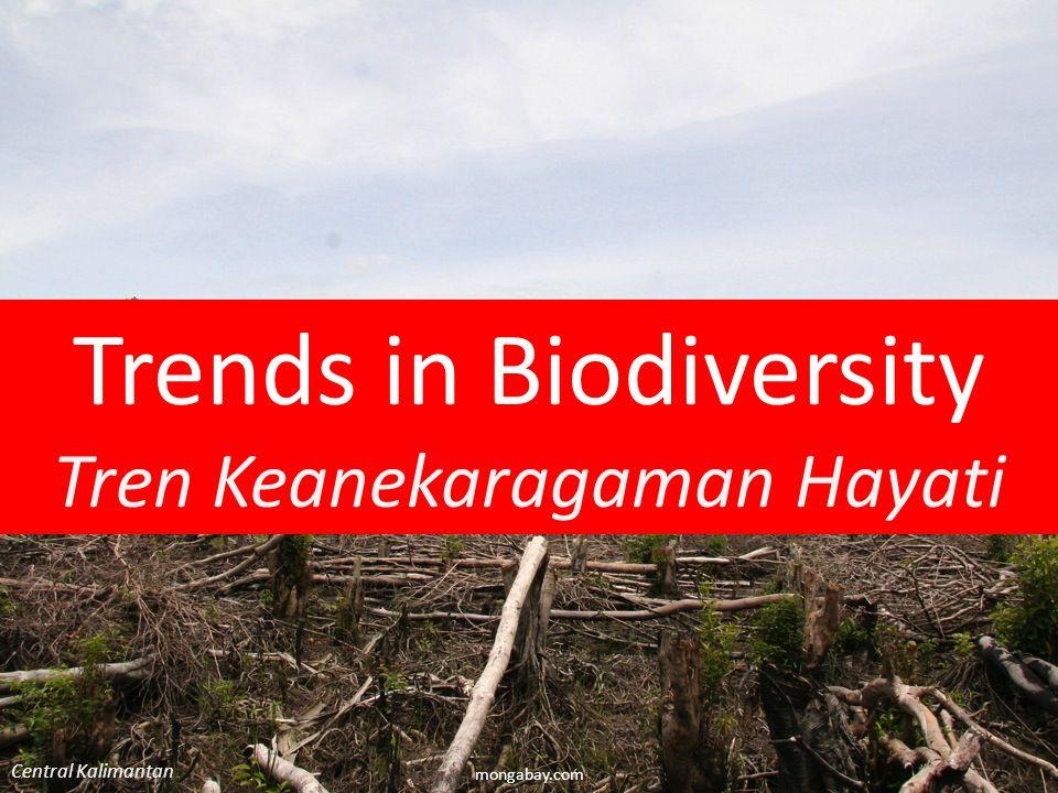 Trends in Biodiversity - Global mongabay.com Peru Deforestasi: 9,3 juta hektar / tahun 2000-10, termasuk 40 ha m dari hutan primer